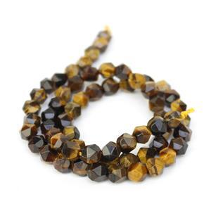 70cts Tiger Eye Star Cut Rounds Approx 6mm, 38cm Strand
