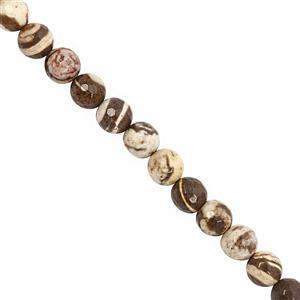 132cts Australian Zebra Jasper Faceted Round Approx 8 to 8.50mm, 30cm Strand