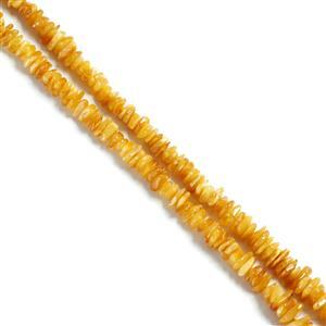 Baltic Butterscotch Amber Chips Approx 2x5mm to 4x11mm, 38cm Strand