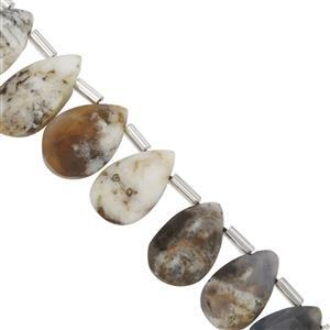 75cts Dendrite Opal Graduated Faceted Pears Approx 11x7 to 14.5x9mm, 20cm Strand with Spacers