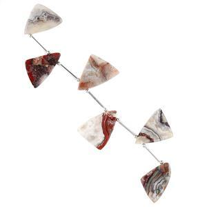 75cts Crazy Lace Agate Graduated Plain Triangle Slices Approx 18x17 to 24x18mm, 8cm Strand.