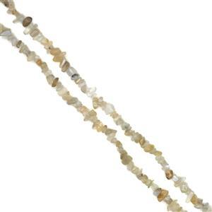 250cts White Moonstone chips Approx 5x8mm, 80cm