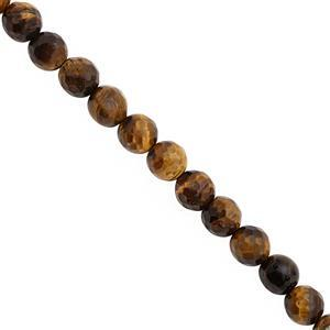 95cts Tigers Eye Faceted Round Approx 8mm, 21cm Strand
