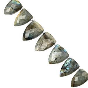 135cts Labradorite Graduated Faceted Inverted Pear Approx 11x7 to 22.5x15.5mm, 22cm Strand with Spacers