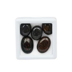 50cts Dinosaur Bone Smooth Oval Cabs Approx 15x12 to 18x13mm, (Pack Of 5)