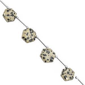 75cts Dalmatian Quartz Faceted Star Hexagon Approx 10.50 to 14mm, 22cm Strand with Spacers
