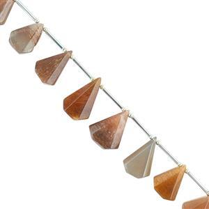 100cts Gold Sheen Moonstone Graduated Step Cut Pears Approx 13x9 to 22x17mm, 16cm Strand.