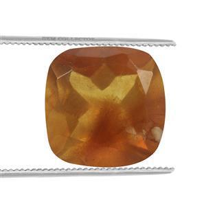 0.35cts Burmese Amber 7x7mm Cushion  (N)