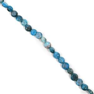 210cts Neon Apatite Coin Approx 10mm, 38cm