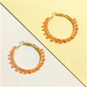 10 pair gold plated gemstone hoop earring