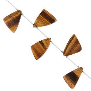 85cts Tigers Eye Graduated Plain Triangular Slices Approx 19x14 to 26x17mm, 10cm Strand.