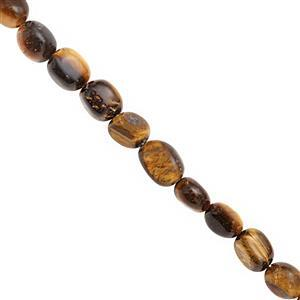 140cts Tigers Eye Smooth Tumble Approx 6x4 to 10x7mm, 38cm Strand