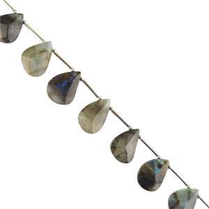 90cts Labradorite Graduated Triangle Cut Fancy Pears Approx 16x11 to 20x13mm, 14cm Strand.