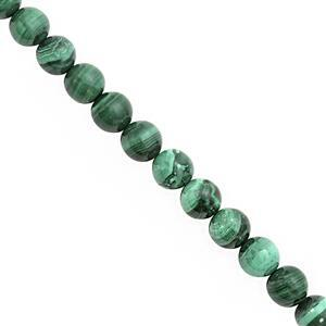 138cts Malachite Smooth Round Approx 8mm, 20cm Strand
