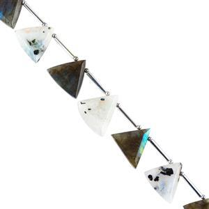 65cts Labradorite & Rainbow Moonstone Step Cut Triangles Approx 13 to 18 mm, 14cm Strand.