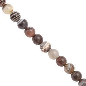 130cts Botswana Agate Smooth Round Approx 7.75 to 8.25mm, 28cm Strand