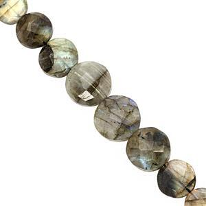 105cts Grey Labradorite Graduated Faceted Coin Approx 9 to 16mm, 20cm Strand