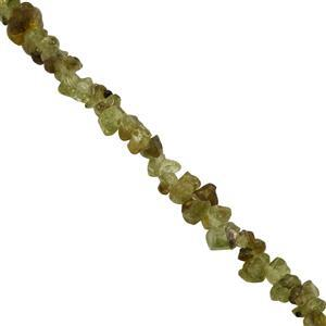 150cts Changbai Peridot Small Nuggets Approx 2.5x1.25 to 6.50x3.50mm, 84cm Strand