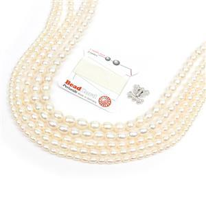 Deal of The Day: 5x Strands White Freshwater Cultured Rice Pearls, 925 3 Row CZ Clasp & Silk