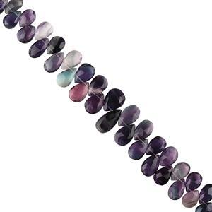 218cts Multi Colour Fluorite Graduated Faceted Pears Approx 10x6 to 16x9mm, 18cm Strand.