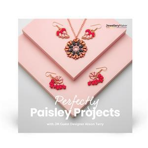 60th Special Perfectly Paisley Projects with Alison Tarry DVD (PAL)