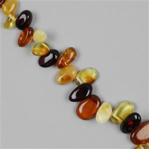Baltic Multicolour Amber Medium Nuggets Approx 7x4mm to 18x11mm