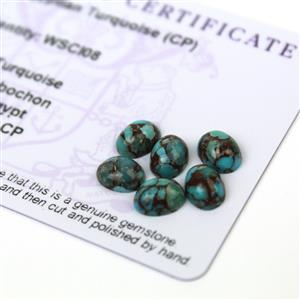 5cts Egyptian Turquoise 8x6mm Oval Pack of 6 (CP)