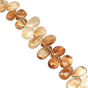 105cts Natural Shaded Imperial Topaz Top Side Drill Graduated Smooth Pear Approx 5x4 to 11x7mm, 19cm Strand