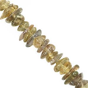 42cts Yellow Tanzanite Smooth Chips Approx 2.5x2.5 to 5.5x4mm, 37cm Strand