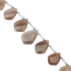 90cts Chocolate Moonstone Top Side Drill Faceted Shields Approx 15x10.5 to 24x15.5mm, 20cm Strand with Spacers