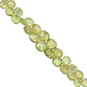 30cts Peridot Top Side Drill Graduated Faceted Heart Approx 4.5 to 7mm, 17cm Strand with Spacer