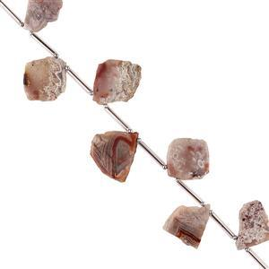 60cts Crazy Lace Agate Graduated Plain Slabs Approx 6x12 to 24x19mm, 12cm Strand.