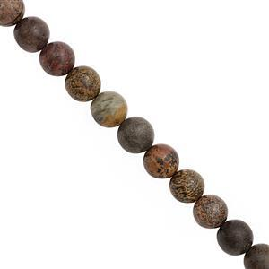 210cts Arctic Jasper Smooth Round Approx 10mm, 30cm Strand