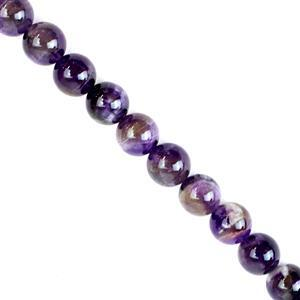 270cts Dog Tooth Amethyst Plain Rounds Approx 10mm 38cm strand
