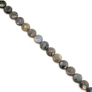 160cts Labradorite Faceted Coins Approx 12mm, 38cm Strand