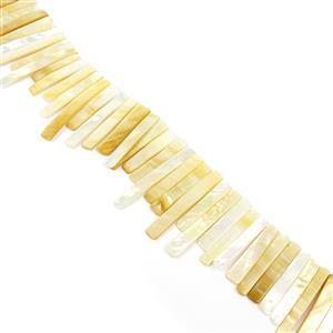 White & Gold Shell Graduated Bars Approx 6x35-8x55mm, 38cm Strand