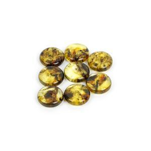 Baltic Earthy Amber Beads Disc (8pk)