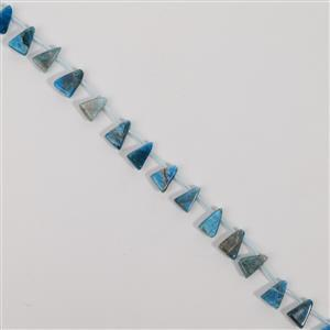 135cts Neon Apatite Top Drilled Triangle Approx 9x13mm, 38cm