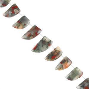 135cts Bloodstone Graduated Plain Horn Shapes Approx 14x10 to 25x12mm, 18cm Strand.