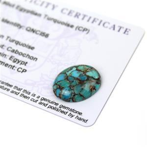 8.9cts Egyptian Turquoise 20x16mm Oval  (CP)