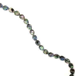 Abalone Flat Pears Approx 18X13mm, 38cm strand