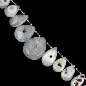 295cts Solar Quartz Side Drill Smooth Pear Elongated Approx 18x13 to 36x28mm, 21cm Strand with Spacers