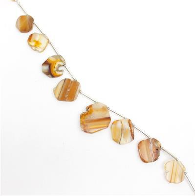 60cts Banded Onyx Graduated Plain Slices Approx 14x13 to 18x15mm, 14cm Strand.