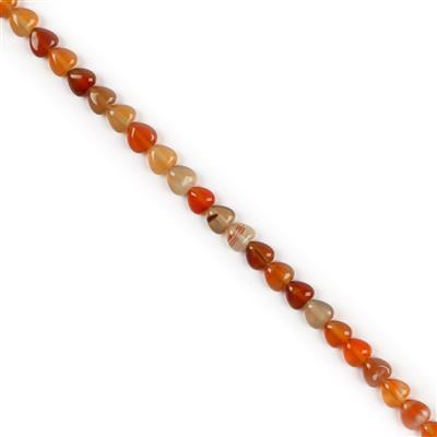 70cts Carnelian Puffy Hearts Approx 8mm, 38cm Strand