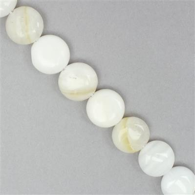 White Shell Puffy Coins Approx 12mm