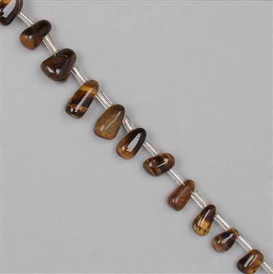 75cts Tigers Eye Graduated Irregular Plain Drops Approx From 6x3 to 10x3mm, 30cm Strand.