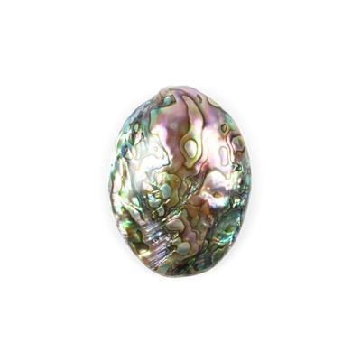 Abalone Shell Single Piece Approx 50x35mm-59x42mm