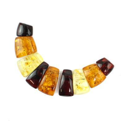 Baltic Amber Baltic Amber Multicolour Fancy Layout Cabochons from Approx 9x12 to 12x21 9pieces