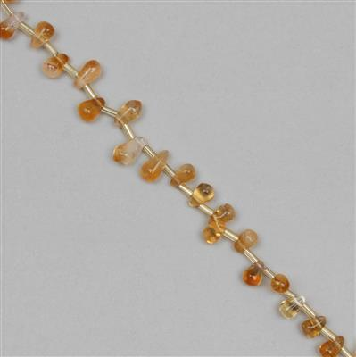 55cts Citrine Graduated Irregular Plain Drops Approx 4x2 to 10x4mm, 36cm Strand.