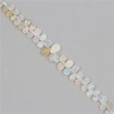 AAA Grade 25cts Ethiopian Opal Graduated Plain Pears Approx From 3x2 to 8x7mm, 19cm Strand.